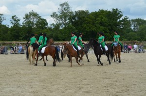 spectacle equestre dressage 2016 normandie