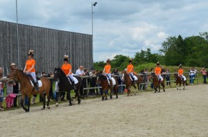 spectacle equestre renard normandie