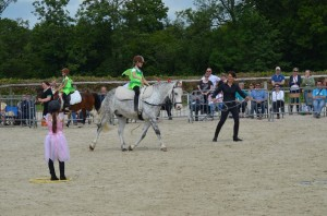 spectacle equestre voltige normandie