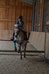 stage poney normandie