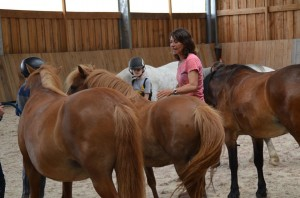 stage vacances poney travail a pied normandie