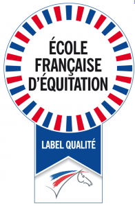 ffe ecuries equitation