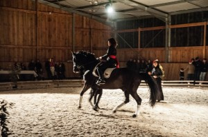 spectacle dressage ecuries d'am