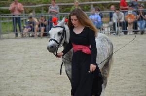 representation equestre dressage