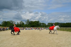 spectacle equestre 2016 percheron normandie