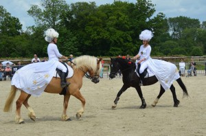 spectacle equestre 2016 poney club