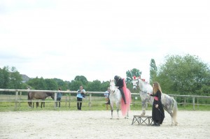 spectacle equestre dressage 2016 orne