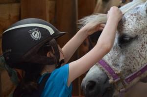 stage equitation mon poney