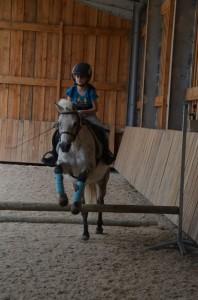stage poney normandie