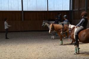 stage poney seance a cru